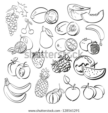 different fruits set isolated on white . vector illustration