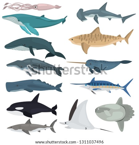 Different giant ocean dwellers color vector icons set. Flat design