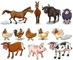 Different kind of farm animals illustration
