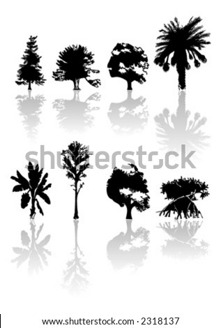 Different kind of silhouettes trees