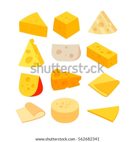 Different kinds of cheese. Vector set isolated on white background.