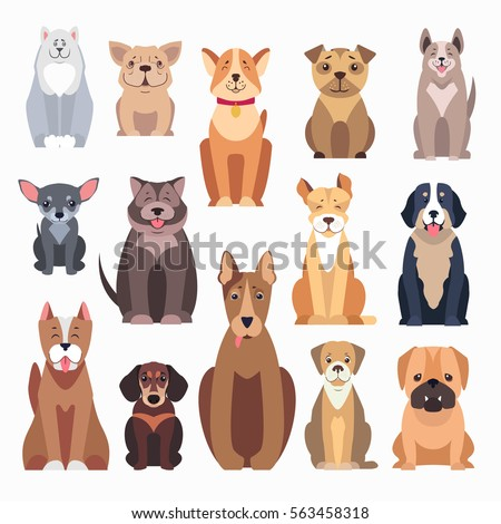 different kinds of dog breeds