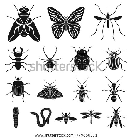 Shutterstock Different kinds of insects black icons in set collection for design. Insect arthropod vector symbol stock web illustration.