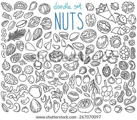 Different kinds of nuts. Set of doodles, hand drawn rough simple sketches. Vector icons isolated on white background.