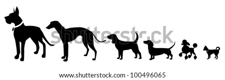 Different Sized Dogs Silhouette Icon Symbol Set EPS 8 vector, grouped for easy editing. No open shapes or paths.