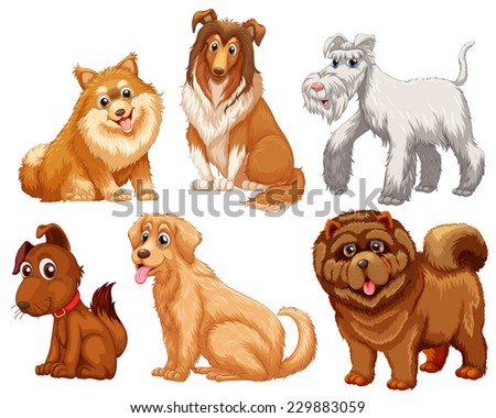 different species of dogs on a