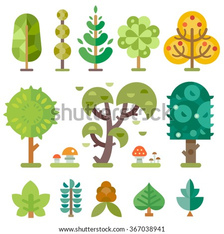 different trees isolated on a