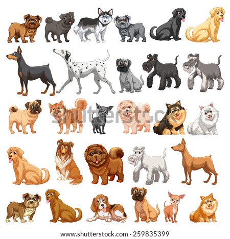 stock-vector-different-type-of-dogs-small-and-big