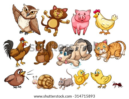 different type of farm animal