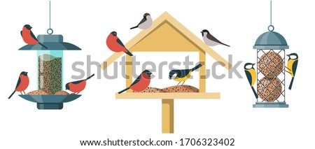 "Different types of bird feeders - Hopper Or ""House"" Feeder, Nyjer Feeder and Suet Feeder. Illustrations in a flat cartoon style isolated on white background. ストックフォト ©"