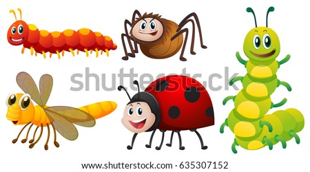 Different types of bugs on white background illustration #635307152