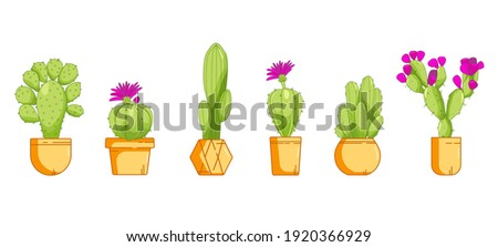 Different types of cactus plants decorative icons set isolated vector illustration. Cactus in pot set. Vector set of bright cacti. Colored, bright cacti flowers. Cactus lettring. Cactus pink flowers