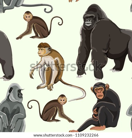 Different types of monkeys pattern. Vector illustration, EPS 10