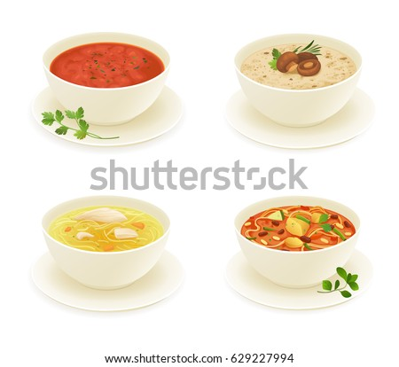 Different types of soup isolated on white background vector.