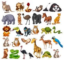 Different types of wild animals on white  illustration