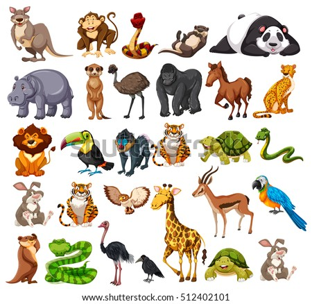 Shutterstock Different types of wild animals on white  illustration