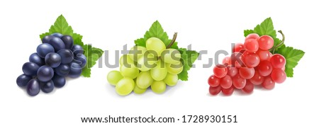 different wine grapes green