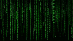 Digital background green matrix. Binary computer code. Vector Illustration. Hacker concept.