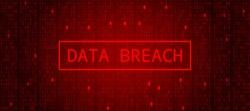 Digital Binary Code on Dark Red Background. Data Breach