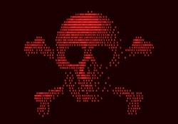 Digital skull and crossbones on binary code. Eps8. RGB. Global colors