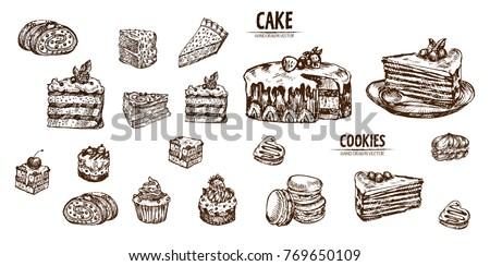 Digital vector detailed line art sliced cake and cupcakes hand drawn retro illustration collection set. Thin artistic pencil outline. Vintage ink flat, engraved design doodle sketches