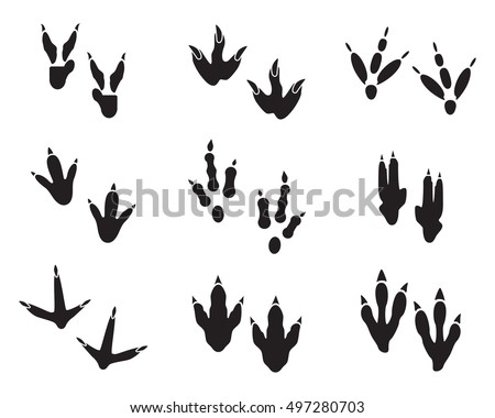 Dinosaur Footprint Tracks Black Set Paw Animal Monster Ancient Reptile Vector Illustration