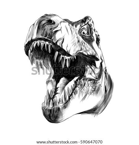 dinosaur head sketch vector