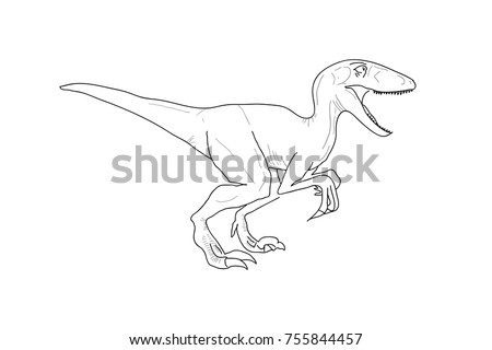 dinosaur  raptor  sketch