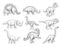 Dinosaurs collection. Extinction wild herbivorous angry animals in paleontology ages vector sketch drawn pictures