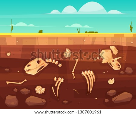 Dinosaurs skulls, reptile skeleton bones, ancient sea molluscs shells in soil deep layers cross section cartoon vector illustration. History of life on Earth concept. Paleontology science background Stock photo ©