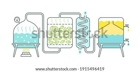 Distillation process. Essential oil making. Distillations aromatic oils production. Perfumery substances. Distiller equipment. Vector illustration infographic. Foto stock ©
