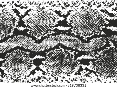 Snake Skin Vector Pattern Download Free Vector Art Stock Graphics