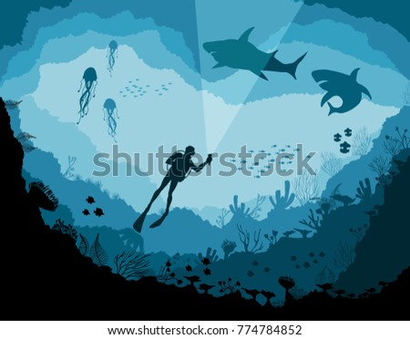 Stock Photo Divers and sharks, reef Underwater wildlife