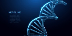 DNA. Abstract 3d polygonal wireframe DNA molecule helix spiral on blue. Medical science, genetic biotechnology, chemistry biology, gene cell concept. innovation technology concept. vector