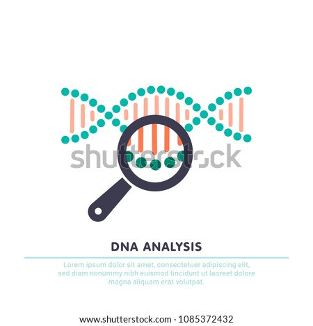 DNA analysis icon, genetics testing. dna chain in magnifying glass sign. genetic engineering, cloning, paternity testing. vector illustration