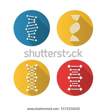 DNA chain flat design long shadow glyph icons set. Deoxyribonucleic, nucleic acid helix. Spiraling strand. Chromosome. Molecular biology. Genetic code. Genome. Genetics. Vector silhouette illustration