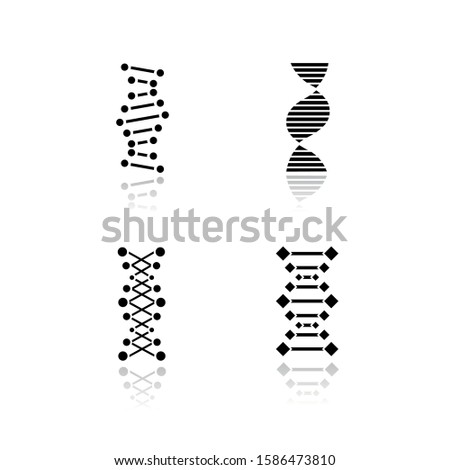 DNA chains drop shadow black glyph icons set. Deoxyribonucleic, nucleic acid helix. Spiraling strands. Chromosome. Molecular biology. Genetic code. Genome. Genetics. Isolated vector illustrations