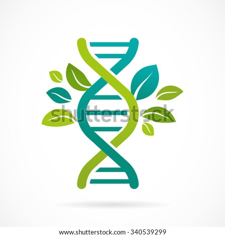dna  genetic icon   tree with