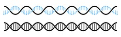 DNA helix line icon, DNA symbol in flat style vector illustration