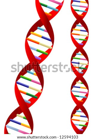 DNA helix representation isolated over white background