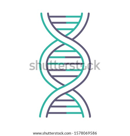 DNA helix violet and turquoise color icon. Deoxyribonucleic, nucleic acid structure. Spiraling strands. Chromosome. Molecular biology. Genetic code. Genome. Genetics. Isolated vector illustration