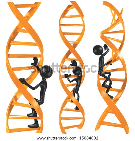 dna ladder