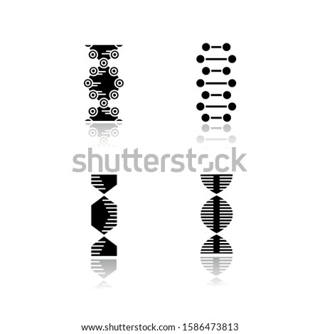 DNA spiral chains drop shadow black glyph icons set. Deoxyribonucleic, nucleic acid helix. Spiraling strands. Chromosome. Molecular biology. Genetic code. Genetics. Isolated vector illustrations