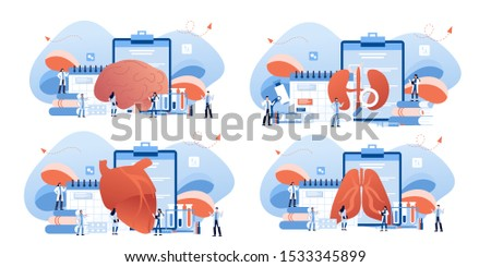 Doctor and human internal organ set. Anatomy concept. Brain, lungs, kidneys and heart. Therapist make diagnosis. anatomical and medical inner organs disease treatment. Pharmacy research system