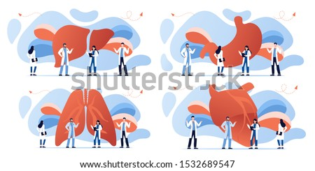 Doctor and human internal organ set. Anatomy concept. Heart, lungs, stomach and liver. Therapist make diagnosis. anatomical and medical inner organs disease treatment. Pharmacy research system