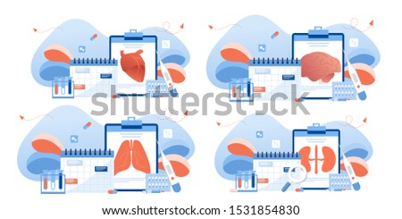 Doctor and human internal organ set. Anatomy concept. Kidney, lungs, heart and brain. Therapist make diagnosis. anatomical and medical inner organs disease treatment. Pharmacy research system