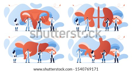 Doctor and human internal organ set. Anatomy concept. Uterus, kidneys, stomach and liver. Therapist make diagnosis. anatomical and medical inner organs disease treatment. Pharmacy research system