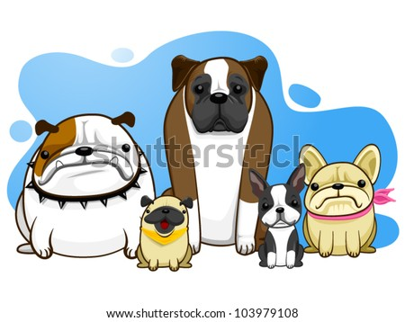 dog all breed bulldog pug boston terrier french bulldog