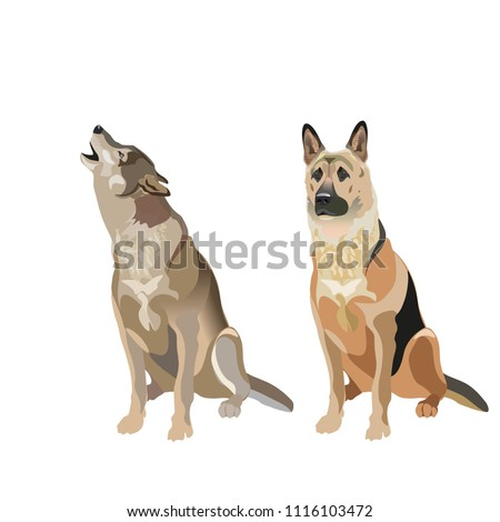 dog and wolf vector