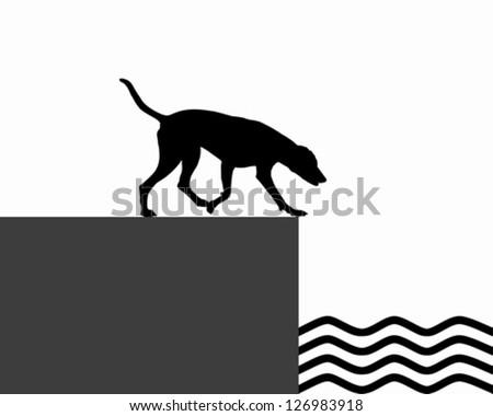 Dog at the shore